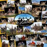 Sunfish Valley Whitetails profile photo