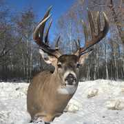 Chaparral Hunting Adventures profile photo