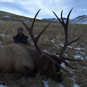 Boulder Basin Outfitters - Cody, Wyoming | Guidefitter