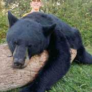 Black Hide Bear Hunt Adventures