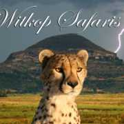 Witkop Safaris profile photo
