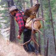 Montana Hunting & Fishing Adventures profile photo