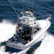 C-Devil II Sportfishing, Inc profile photo