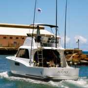 Hunt Fish Kauai profile photo