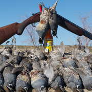 Arturo Malo Baja Hunting profile photo