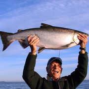 Nootka Island Lodge profile photo