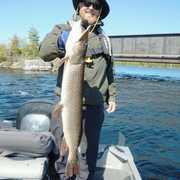 Northern Walleye Lodge profile photo