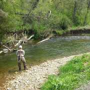 On The Fly Guide Service profile photo