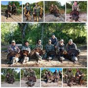 Southern Outdoor Outfitters