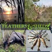 Feathers and Sheds Unlimited Outdoors (FSU) profile photo