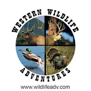 Western Wildlife Adventures, LLC profile photo
