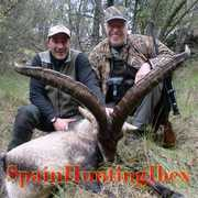 Spain Hunting Ibex profile photo