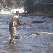 Cold River Guide Service profile photo