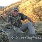 Ward's Outfitters profile photo