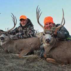 Cross C Ranch - Wheatland, Wyoming | Guidefitter