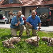 Balkan Venture Safaris profile photo