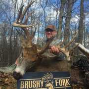 Brushy Fork Outfitters - B.F.O. profile photo