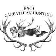 B&D CARPATHIAN HUNTING profile photo