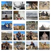 West Texas Hunt Org. (WTHO)