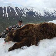 Mountain Monarchs Of Alaska