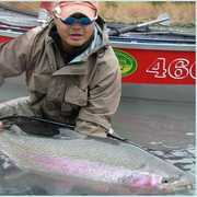 Alaska On The Fly Guides & Outfitter profile photo