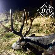 Deep Timber Outfitters profile photo