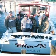 ELLEN-R  Charters profile photo