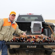 Brown's Pheasant Hunting profile photo