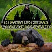 Bearadise Bay Wilderness Camp profile photo